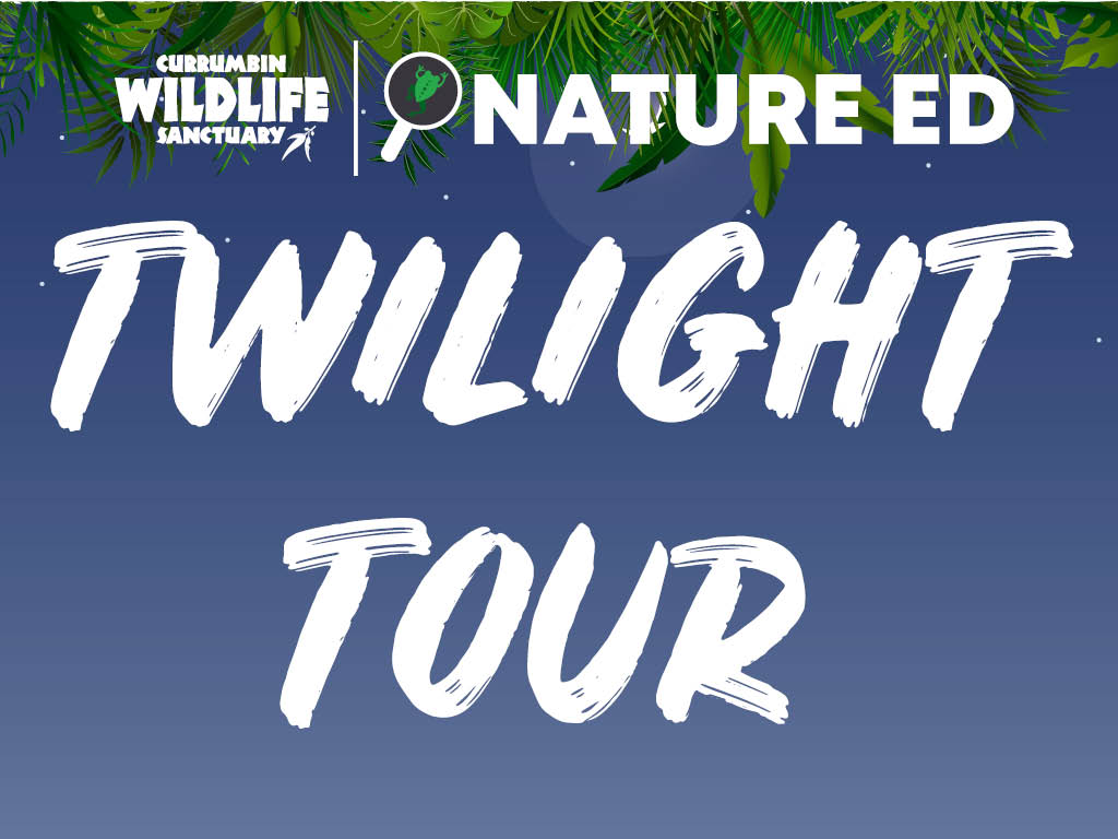 Twilight_Tour_Index_Mobile.jpg
