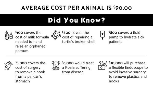 Average Cost Per Animal 1244x730.jpg