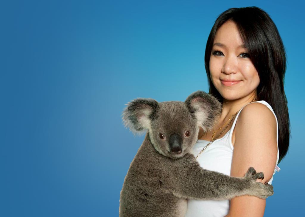 koala-cuddle-mob.jpg