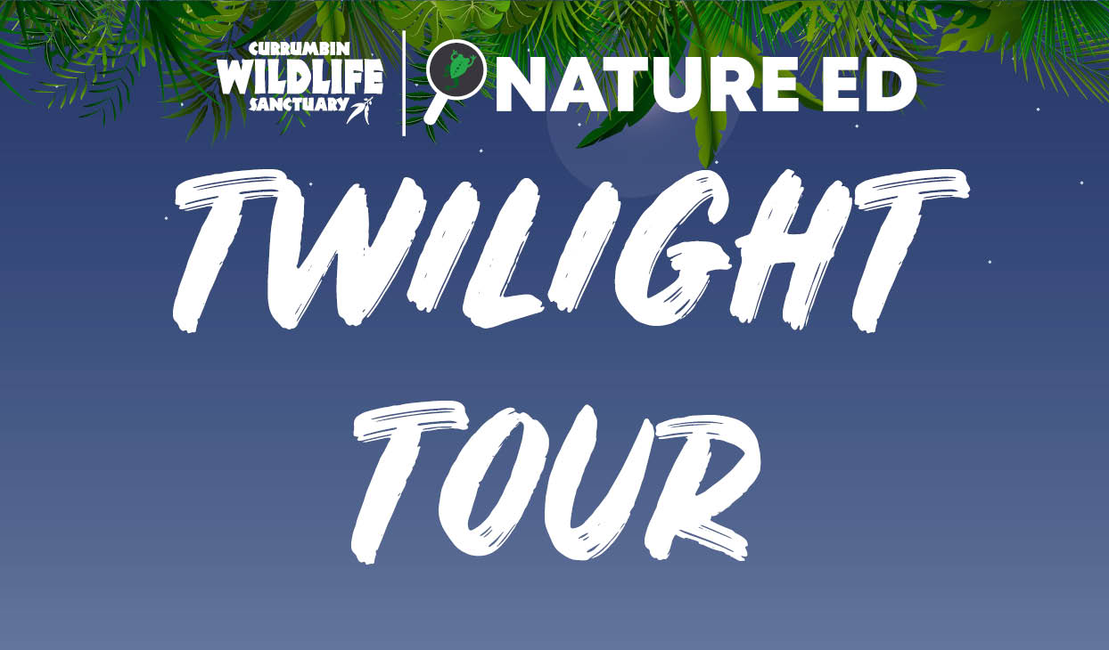 Twilight_Tour_Index_Desktop.jpg