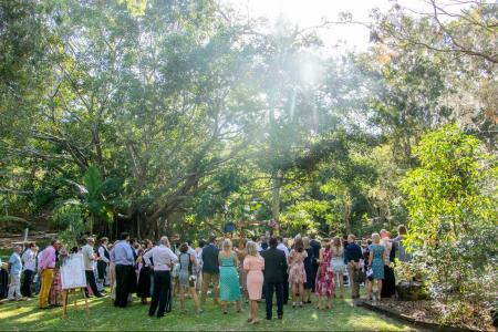 Wedding Ceremony Fig Tree